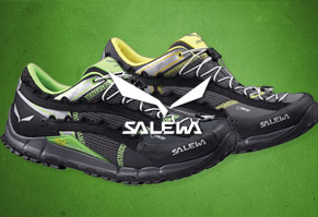 $89.95 Salewa Speed Ascent GTX Shoes