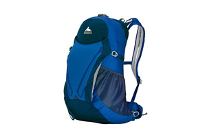 Gregory Fury 24 Backpack - Mens