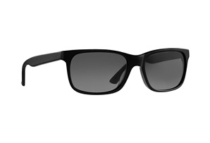 RAEN Weston Sunglasses
