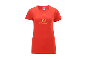Salomon Polylogo Tee - Womens