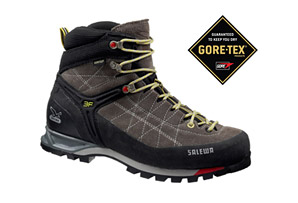 Salewa Mountain Trainer Mid GTX Boot - Mens