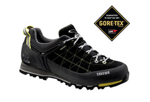 Salewa Mountain Trainer GTX Shoe - Mens