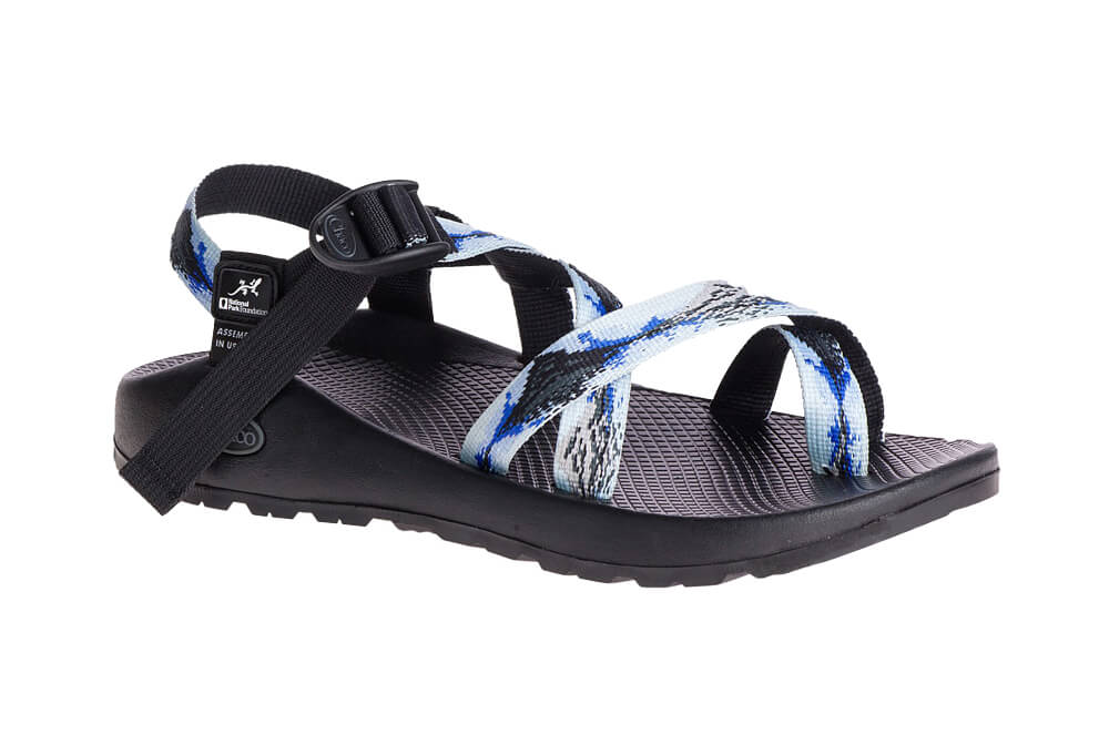 6efdb2be97f6 ACTIVE GearUp - Chaco Z 2 Glacier National Park Foundation Sandals ...
