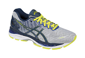ASICS Gel-Nimbus 18 (2E) Shoes - Men's