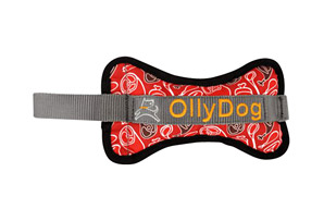 OllyDog Olly Bone II Dog Toy