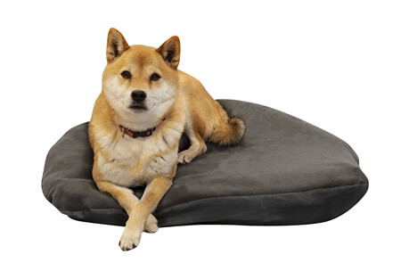 Moon Dog Bed - Large