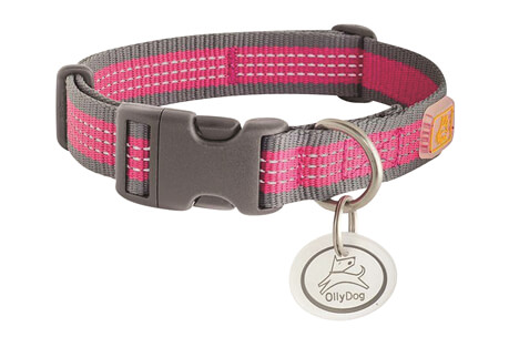 MTN Reflective Collar - Medium