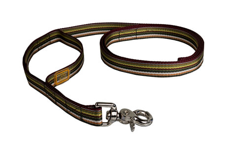 Downtown Leash - 72""