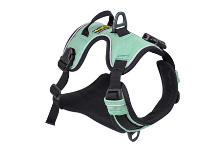 Alpine Reflective Harness