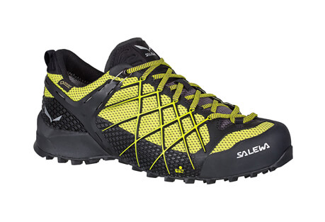 Wildfire GORE-TEX Shoes - Men's