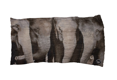Asian Elephant Endangered Species Wrap